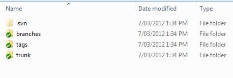 SVN-folders